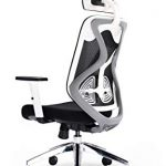 Office Hippo 2020 High Back Executive Chair